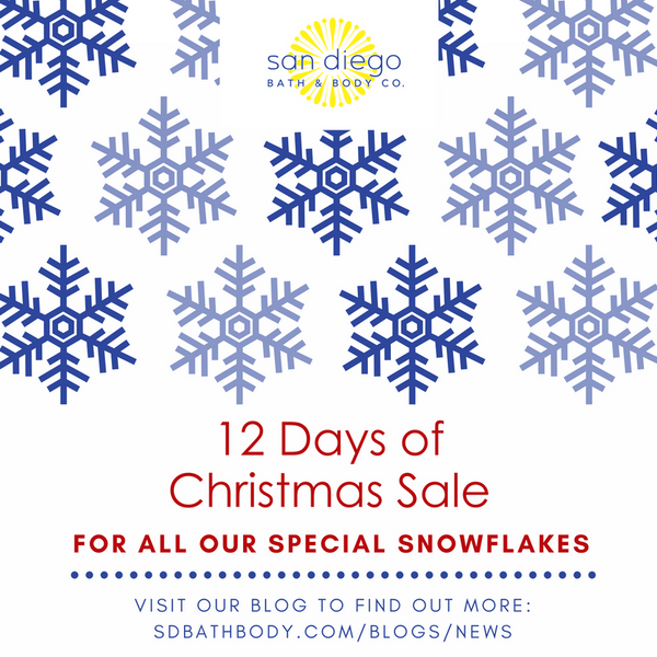 12 Days of Christmas Sale!