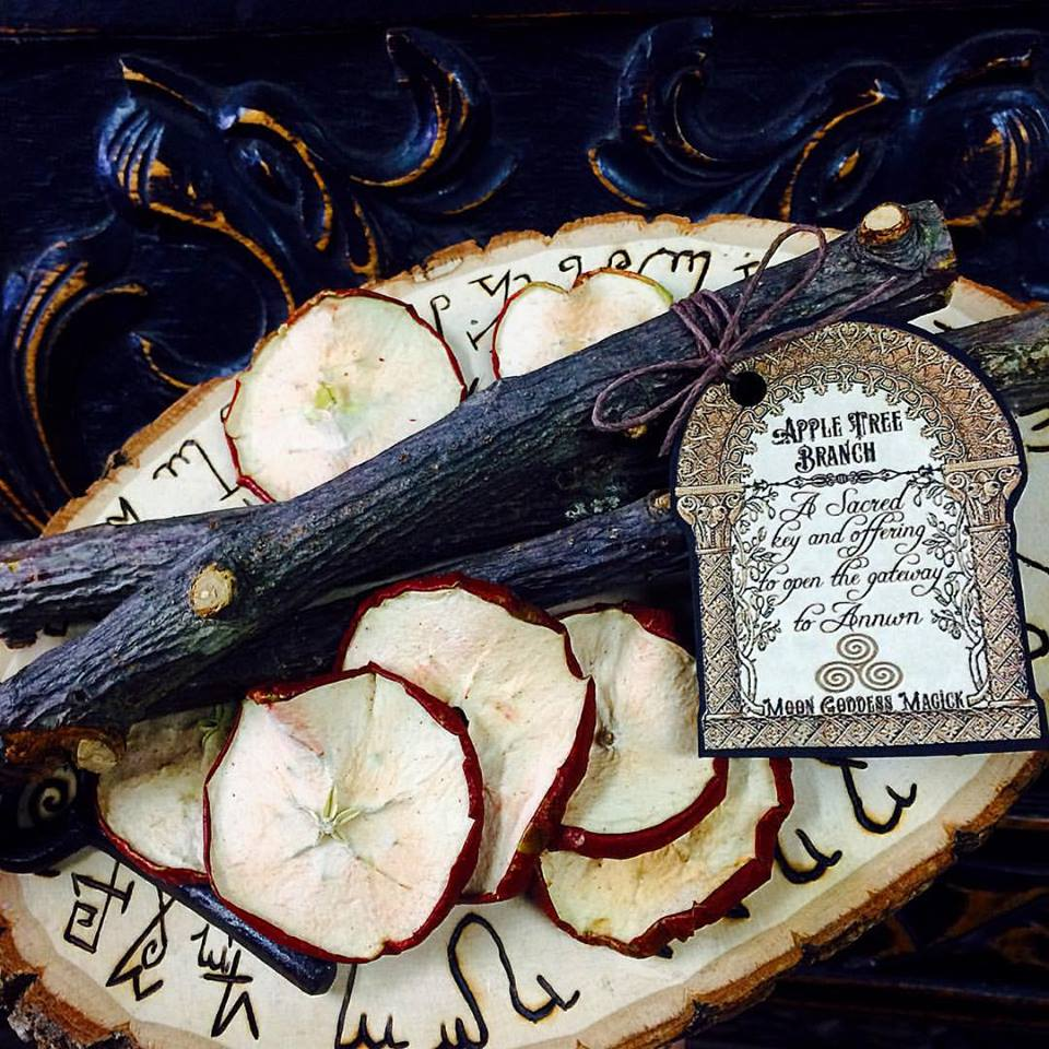 Apple Tree Branch A Simple yet powerful Talisman~ Key to Annwn~ Celtic Otherworld~ Samhain Magick ~ Ritual Object~ Limited Offering~ - Moon Goddess Magick Apothecary