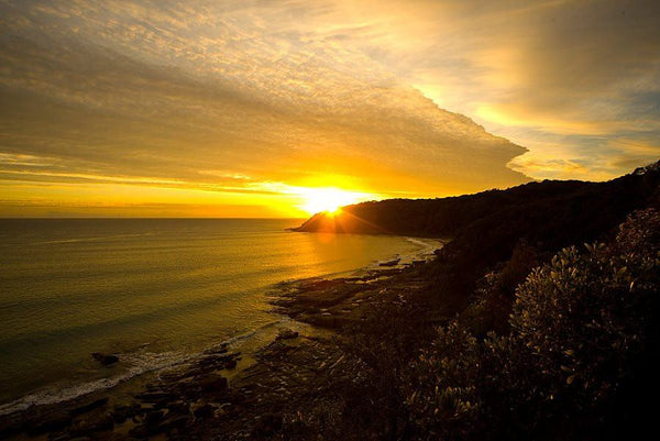 Noosa Headland - Alex Buckingham Photography