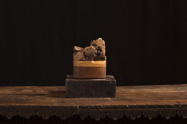 Carved Burl Wood Box