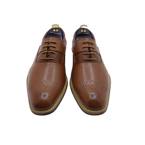 CROCODILE CR800-159 BROWN