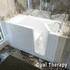 Image of Meditub Handicap Accessible Walk-In Bathtub 3060 Series