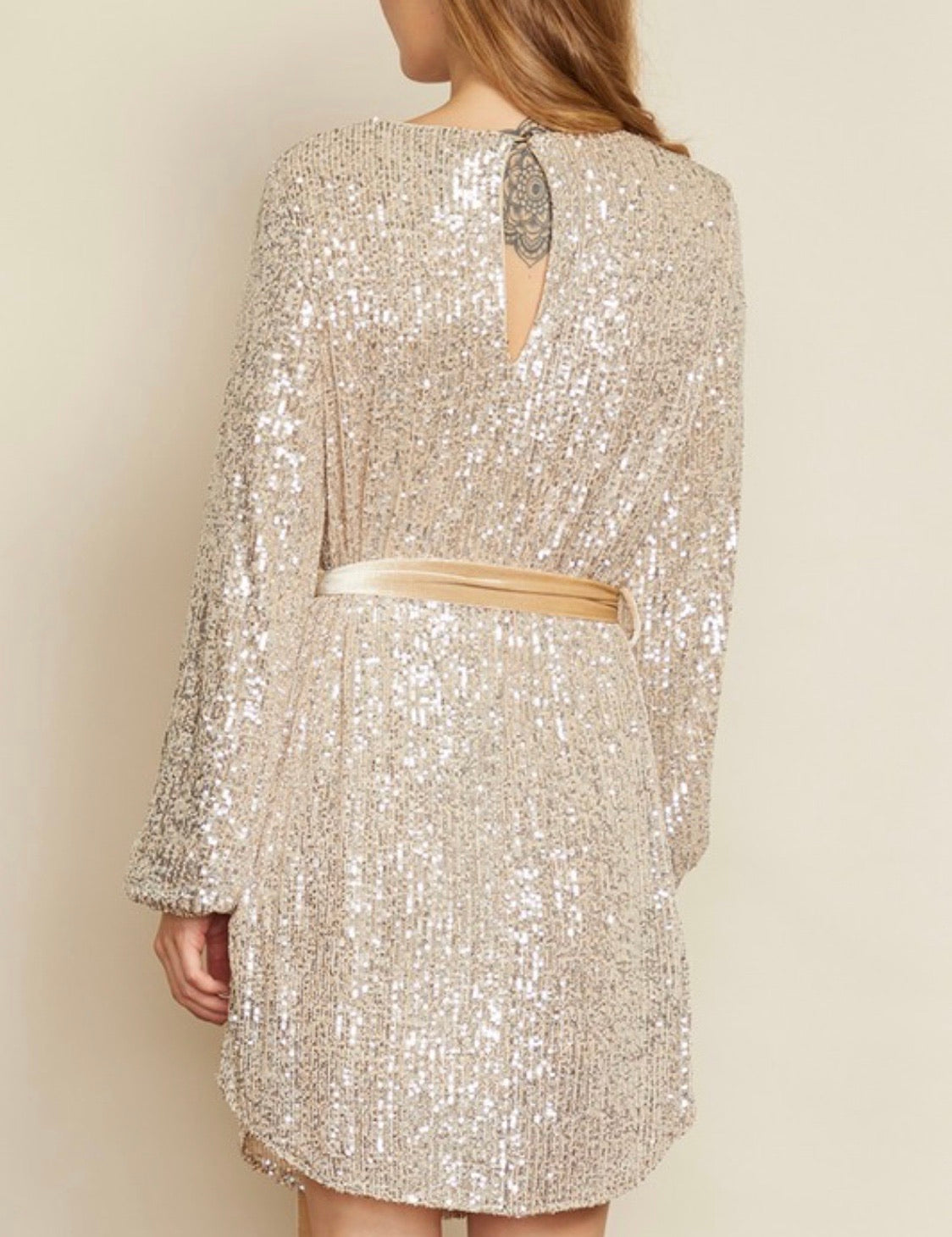 Glimpse Of Sparkle Dress