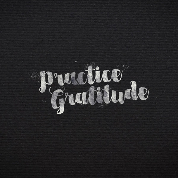 Practice Gratitude (10 Apr 2016), MP3, English