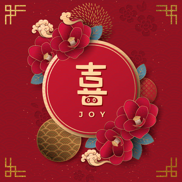 20190202 Joy, MP3, English/Chinese