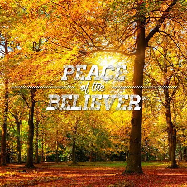 Peace of The Believer Part 1 (24 Oct 2015), MP3, English
