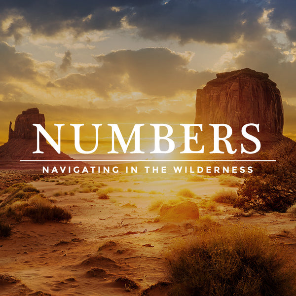 20170318 Numbers 1: In The Wilderness, MP3, English