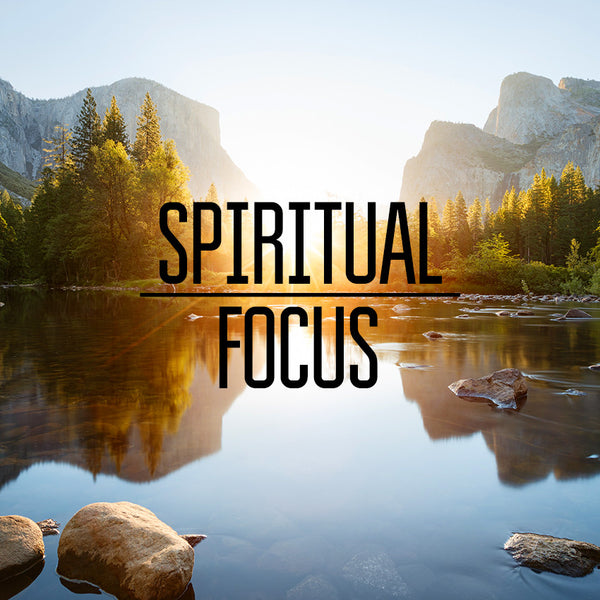 Enlarging Our Capacity Part 4: Spiritual Focus (13 Jun 2015), MP3, English