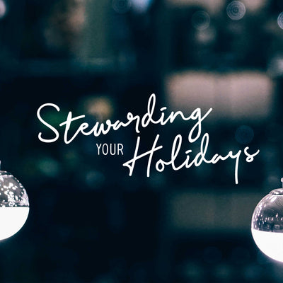 20171210 Stewarding Your Holidays, MP3, English