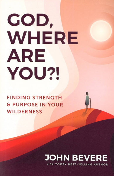 God, Where Are You?! Paperback, English