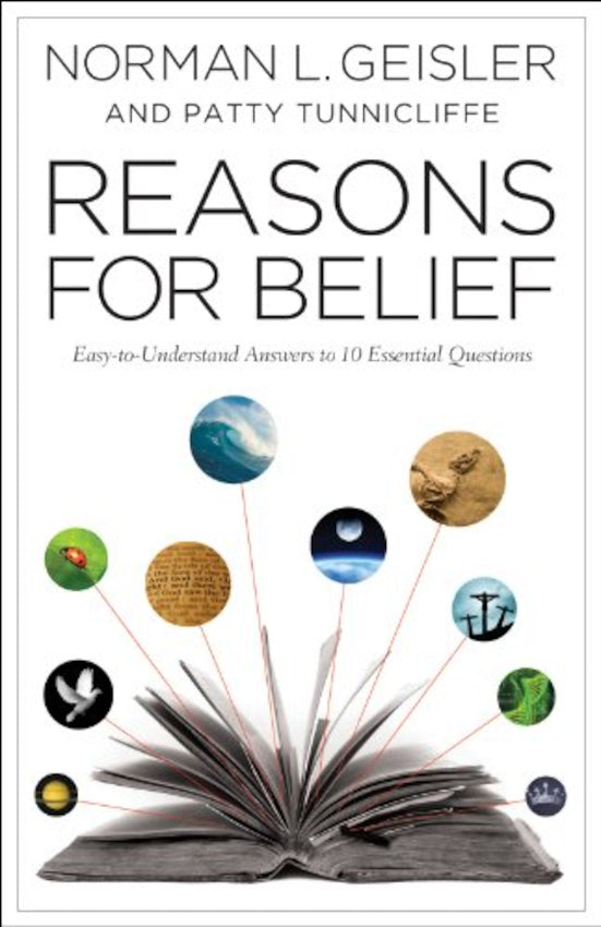Reasons For Belief, Paperback