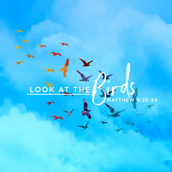 20170624 Look At The Birds, MP3, English