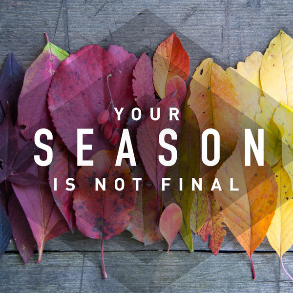 Your Season Is Not Final (21 May 2017), MP3, English