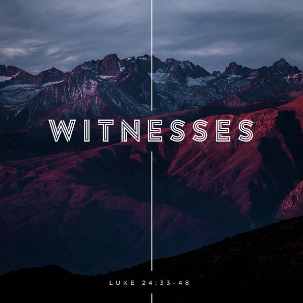 Witnesses (07 May 2017), MP3, English