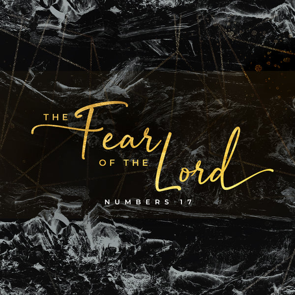 20190119 Numbers 17: The Fear Of The Lord, MP3, English