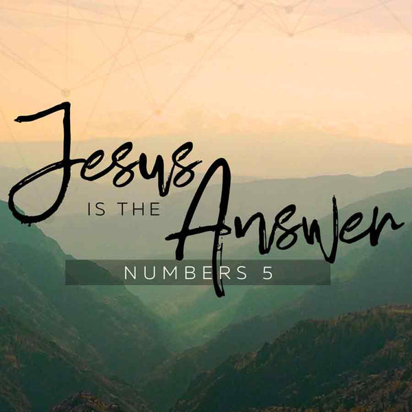 20171119 Numbers 5: Jesus Is The Answer Part 2, MP3, English