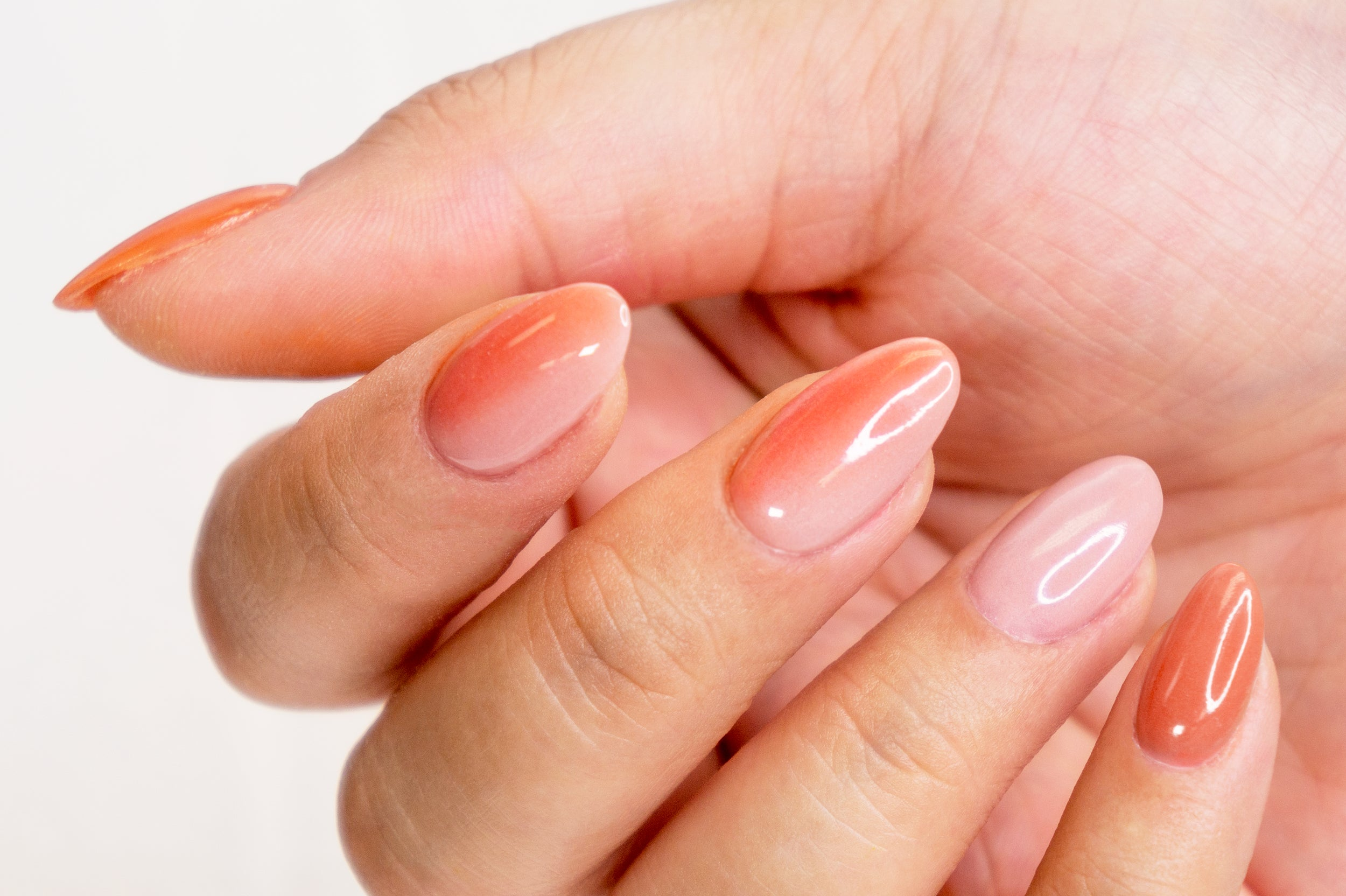How To Apply A Vertical Ombre Mani