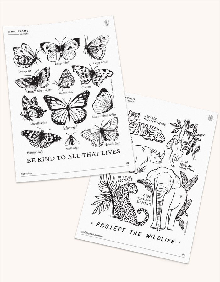 Wholesome Culture Printable Coloring Book - Animals