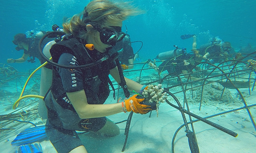 PIYOGA Pants Founder Larissa Miller Helps with Sea Turtle Conservation Project in Bali with the Gili Eco Trust Diving Bio Rock Save the Ocean #savetheseas blue water ocean diving woman in business small business San Diego California