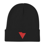 vidotcreative Logo Knit Beanie