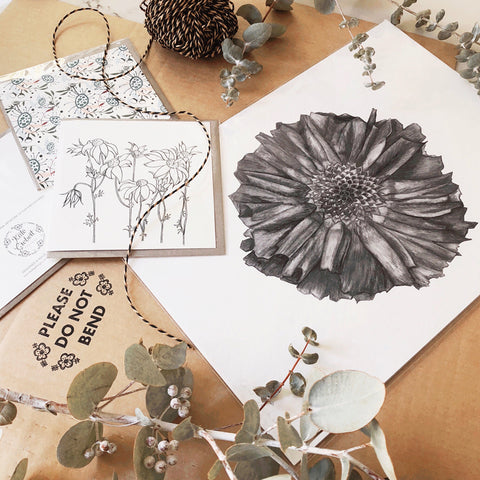 Botanical Art Prints - Botanical Greeting Cards - Packaged by hand