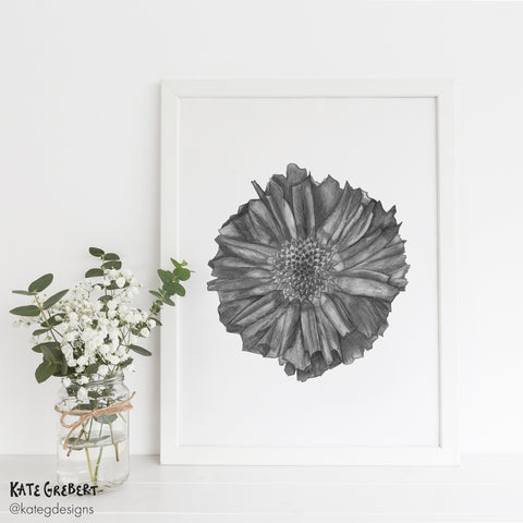 Botanical Art Print - Seed Pod - Limited Edition - Botanical Wall Art - Kate Grebert Designs