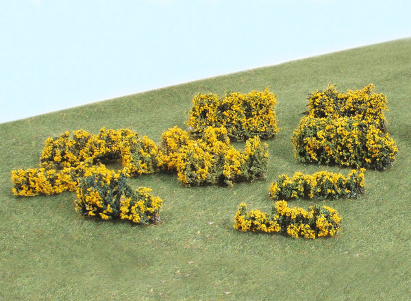 Gorse Bushes