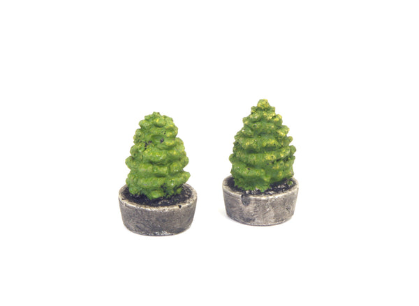 Two Green Trees in Concrete Planters