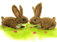 Bunny Needle Felt Kit - makes 2 fluffy bunnies
