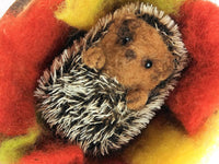 Curled-Up Hedgehog Pack - with coconut shell bed! (no tools)