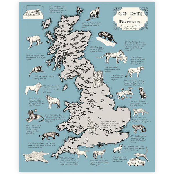 Big Cats of Britain Print - By Anna Walsh