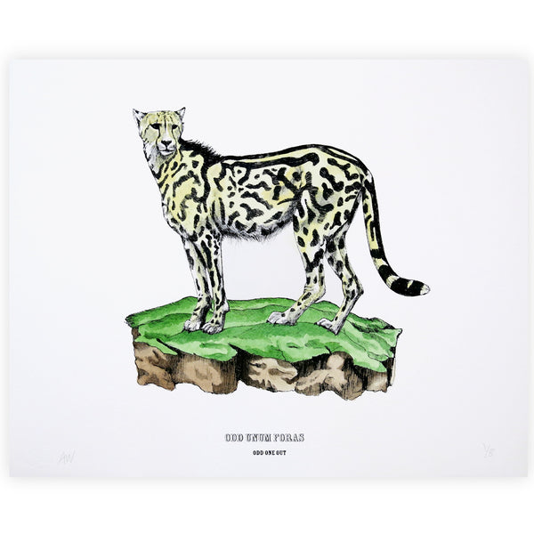 Disrupters (King cheetah) Hand coloured screen print By Anna Walsh