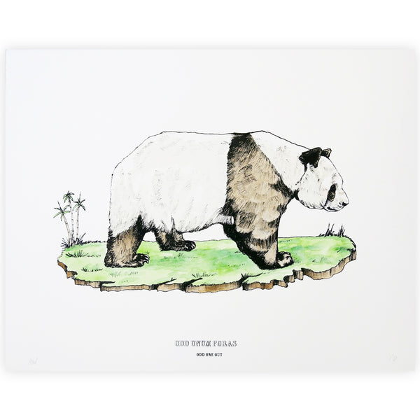 Disrupters (Qinling panda) Hand coloured screen print By Anna Walsh