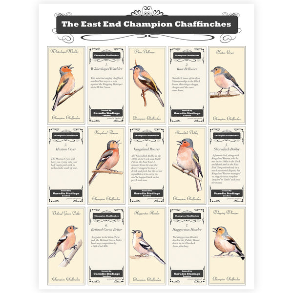The East End Champion Chaffinches Print - By Anna Walsh