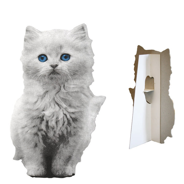 Flat Pet Kitten White