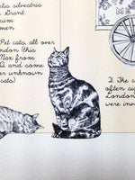 The London Cat Map - By Anna Walsh