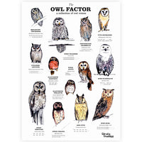 The Owl Factor Print - By Anna Walsh