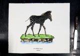 Disrupters (Spotty Zebra Foal) Hand coloured screen print By Anna Walsh