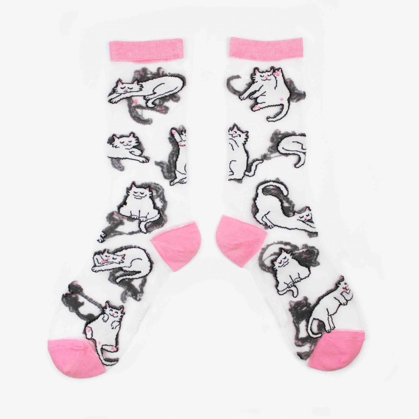 CATS TRANSPARENT SOCKS