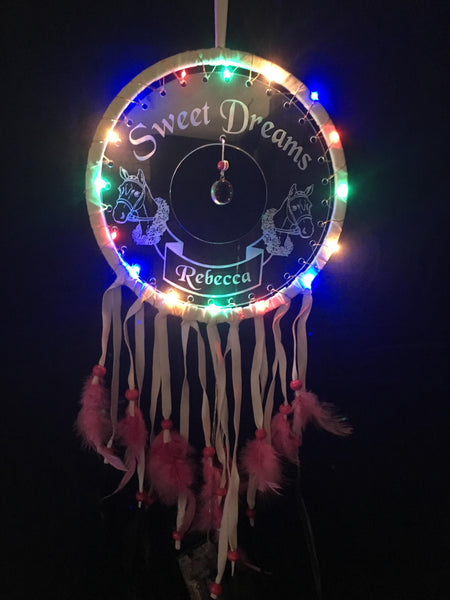 Horse Suede Dream Catchers