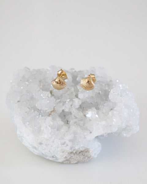 Seashell Earrings - Gold