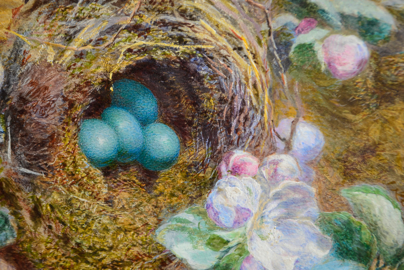 Still Life of Bird's Nest and Blossom by Jabez Bligh
