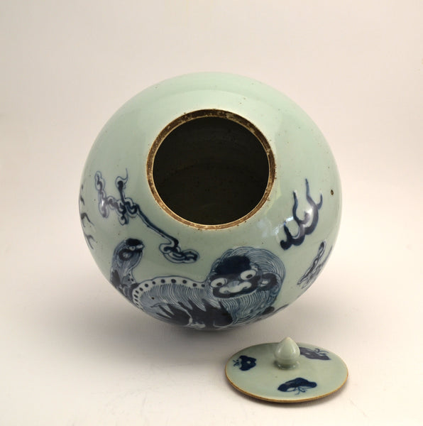 Blue & White Celadon Ginger Jar - Foo Dogs