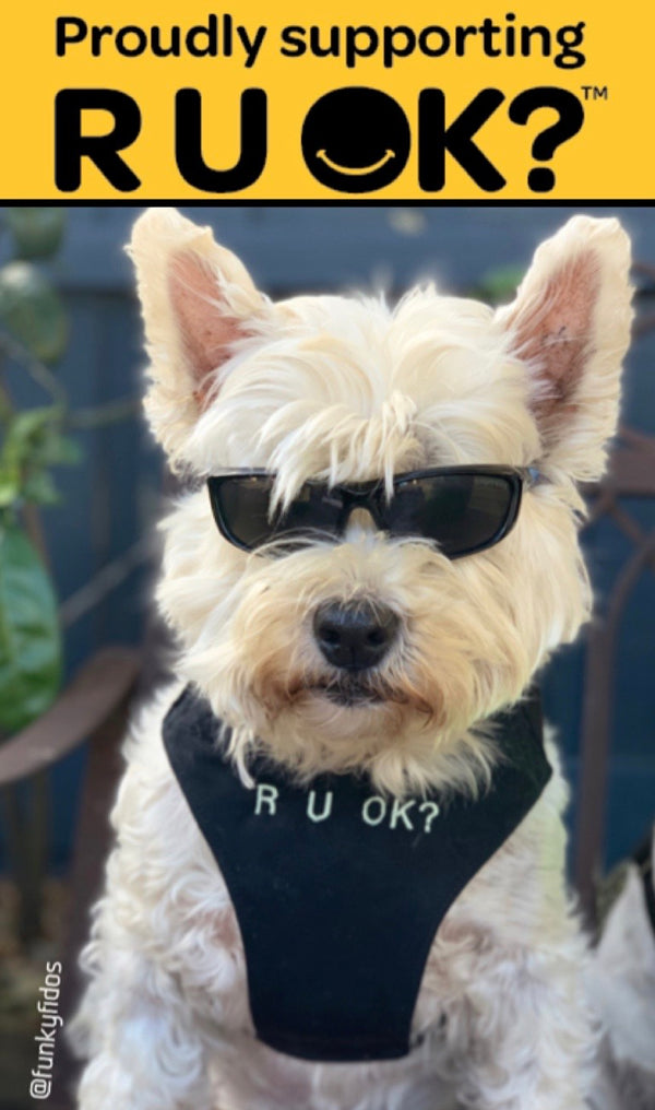 R U OK? Dog Harness - Black