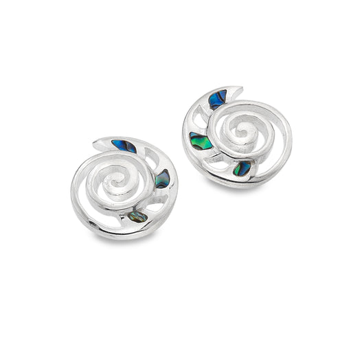 Ammonite & paua shell studs