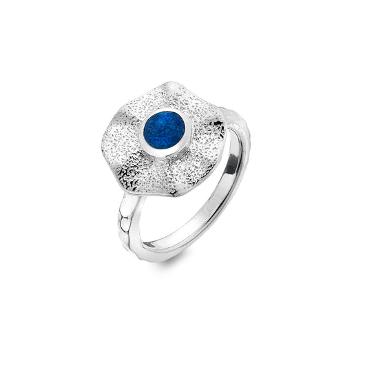 Lapis beach pool ring