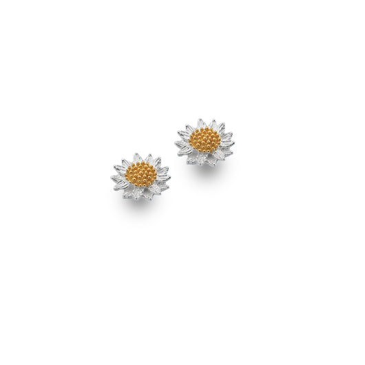 Photo of Glowing sunflower studs