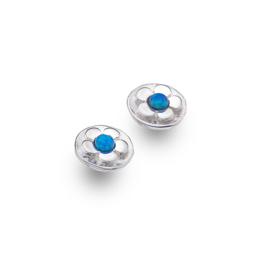 Photo of Little blue daisy studs