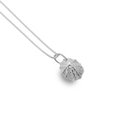 Photo of Limpet shell pendant