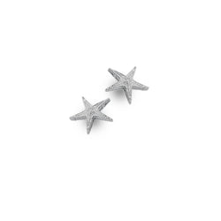 Photo of Sparkling starfish studs